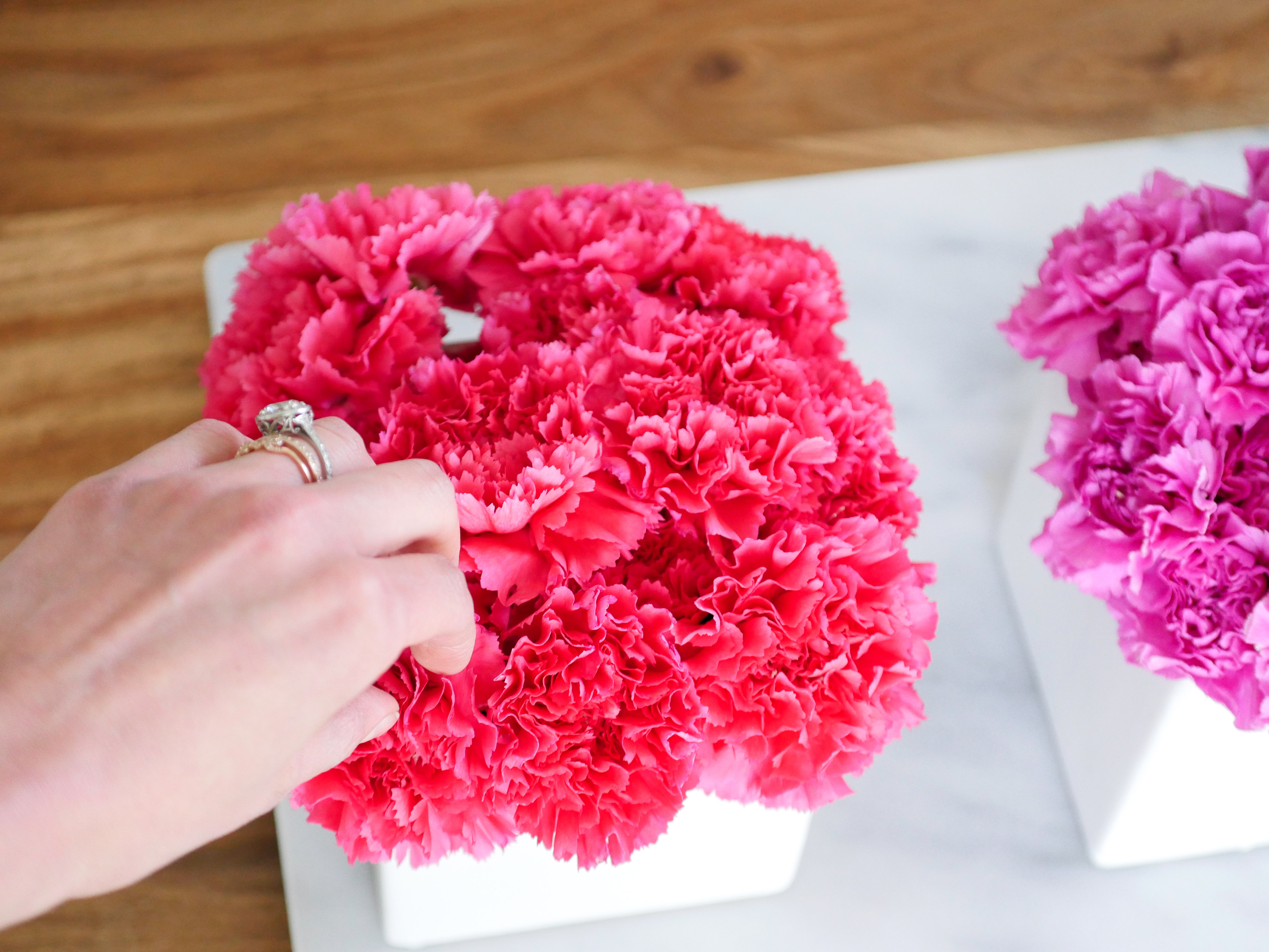 Ombré Carnations - Happily Eva After