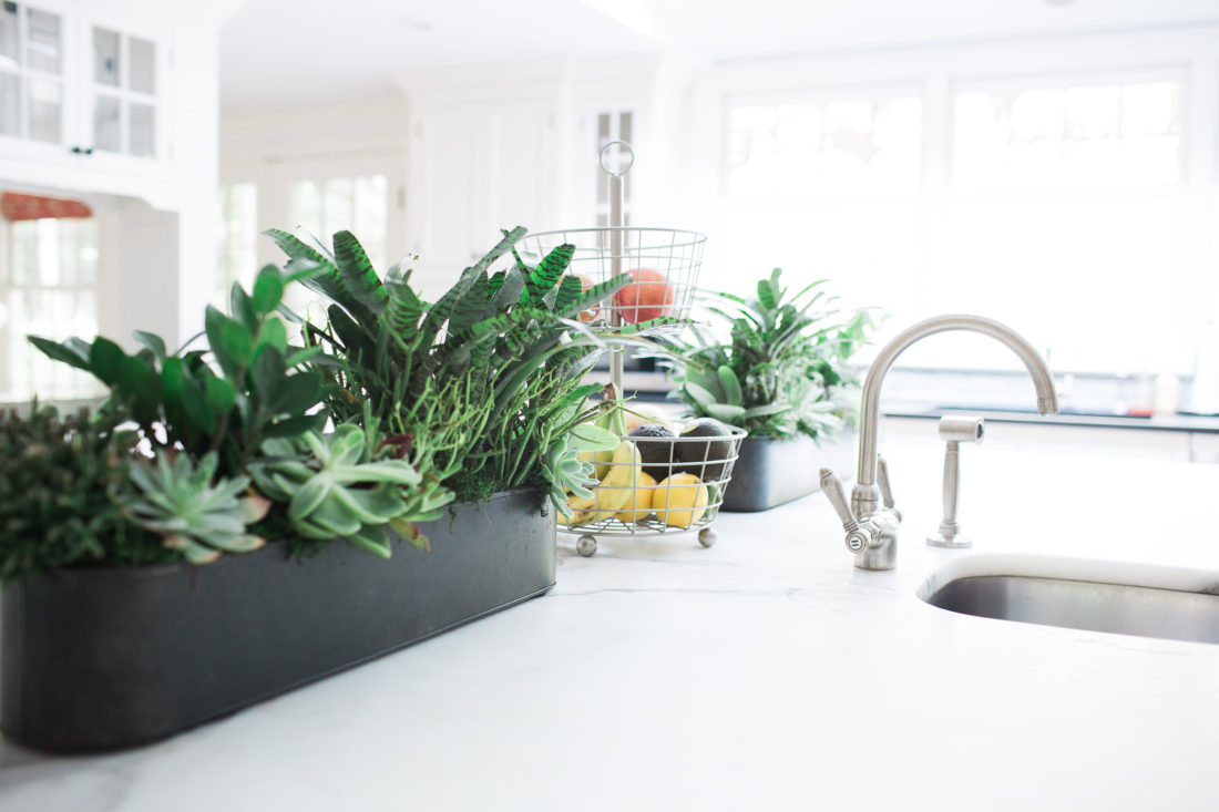 close up of the potted succulents in a galvanized metal planter in the light and airy kitchen of lifestyle blogger Eva Amurri Martino of Happily Eva After