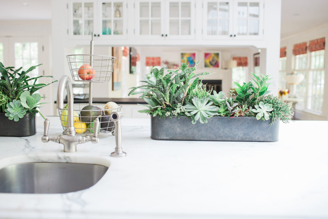 A few of the potted succulents in industrial planters on the white carrara marble kitchen island in lifestyle blogger Eva Amurri Martino's Connecticut home