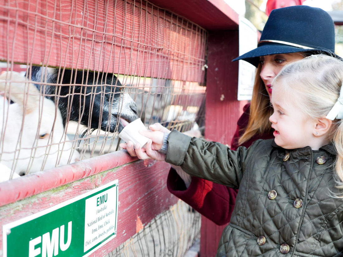 Eva Amurri Martino of lifestyle and motherhood blog Happily Eva After, feeding a goat with her two year old daughter Marlowe