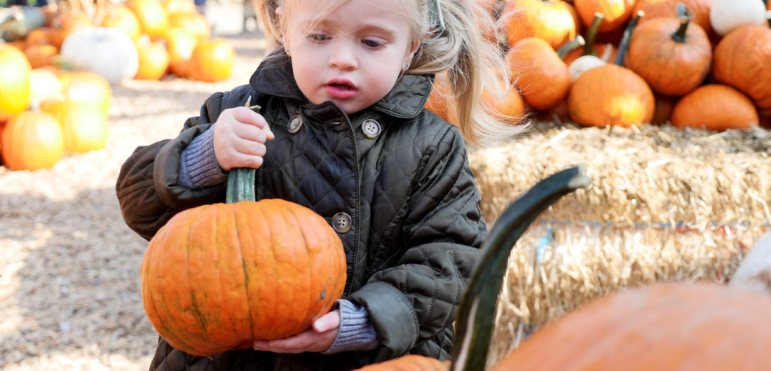 Marlowe Martino, wearing an olive green quilted pea coat and carrying a little pumpkin at silverman's pumpkin patch in connecticut