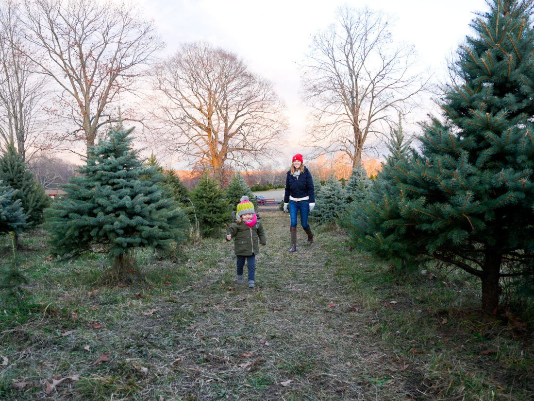 Eva Amurri Martino of lifestyle and motherhood blog Happily Eva After walks through the christmas tree farm in Connecticut with daughter Marlowe