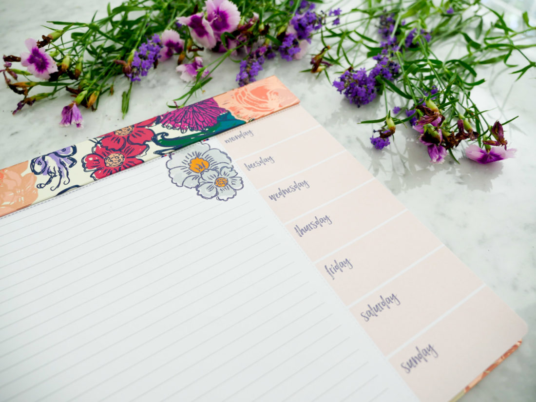 Eva Amurri Martino shows off an Erin Condren Schedule Pad as part of her monthly obsessions roundup