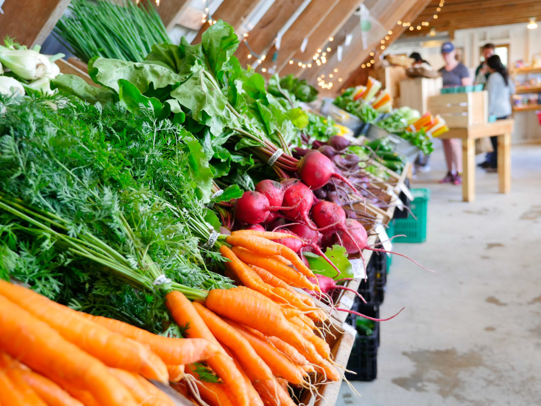 Colorful fresh produce at Beech Hill Farm in Maine