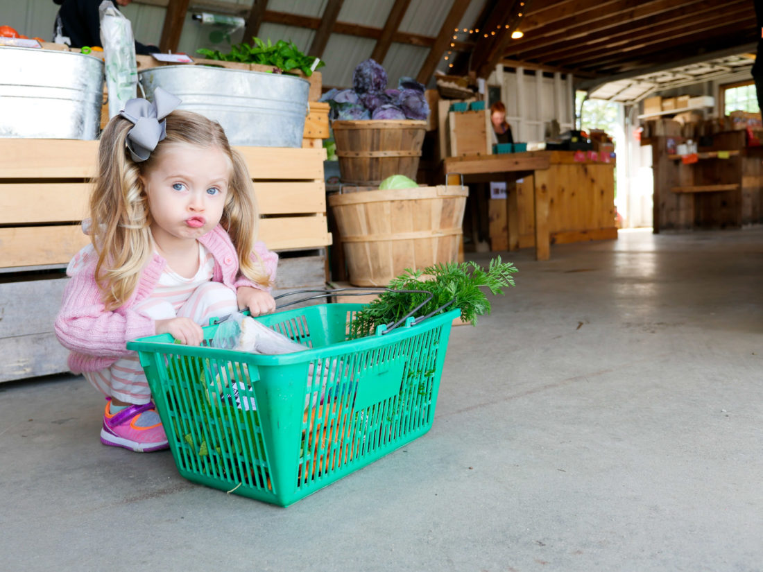 Marlowe Martino collects a basket of produce at Beech Hill Farm in Maine