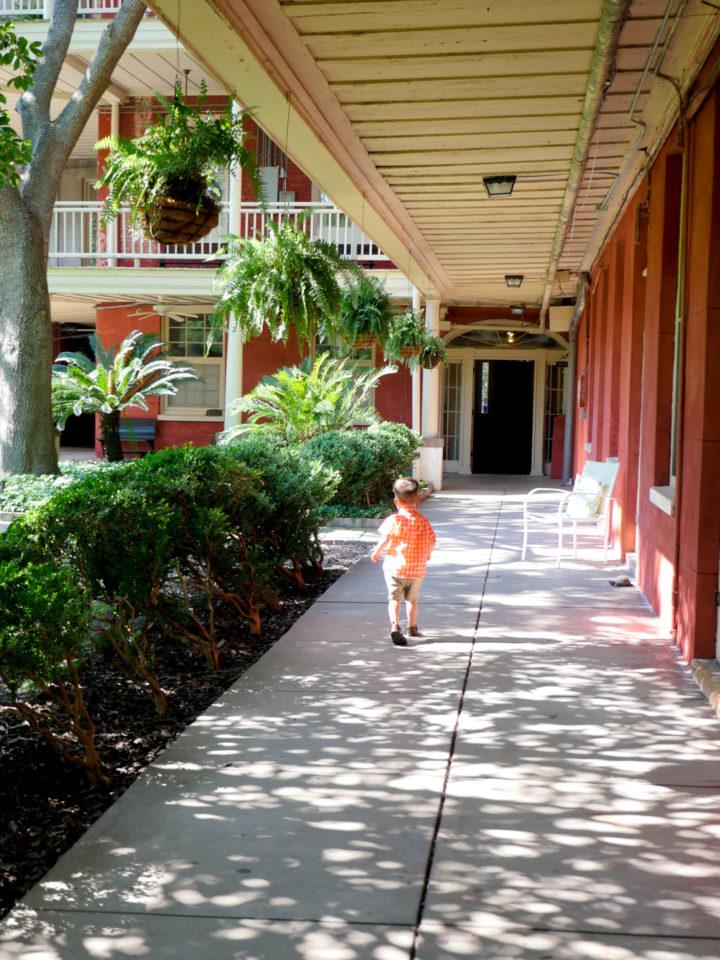 Eva Amurri Martino's son Major running around the site of his parents 2011 wedding in Charleston
