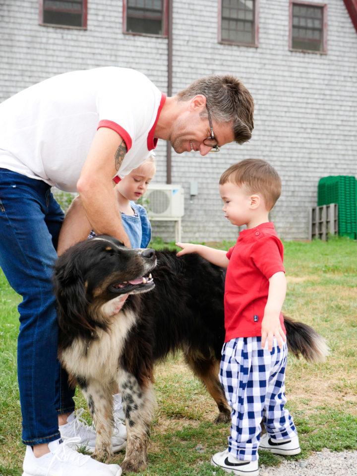 Eva Amurri Martino's husband Kyle teaches their son Major how to pet a dog.