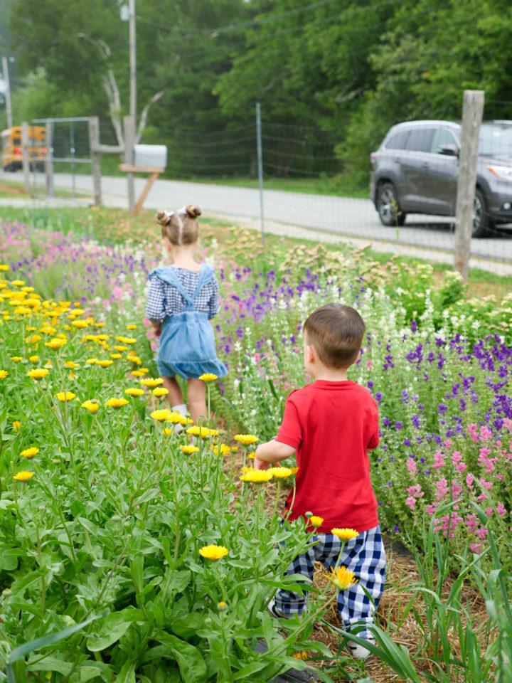 Eva Amurri Martino's kids Marlowe and Major walk in a field of flowers in Bar Harbor, ME.