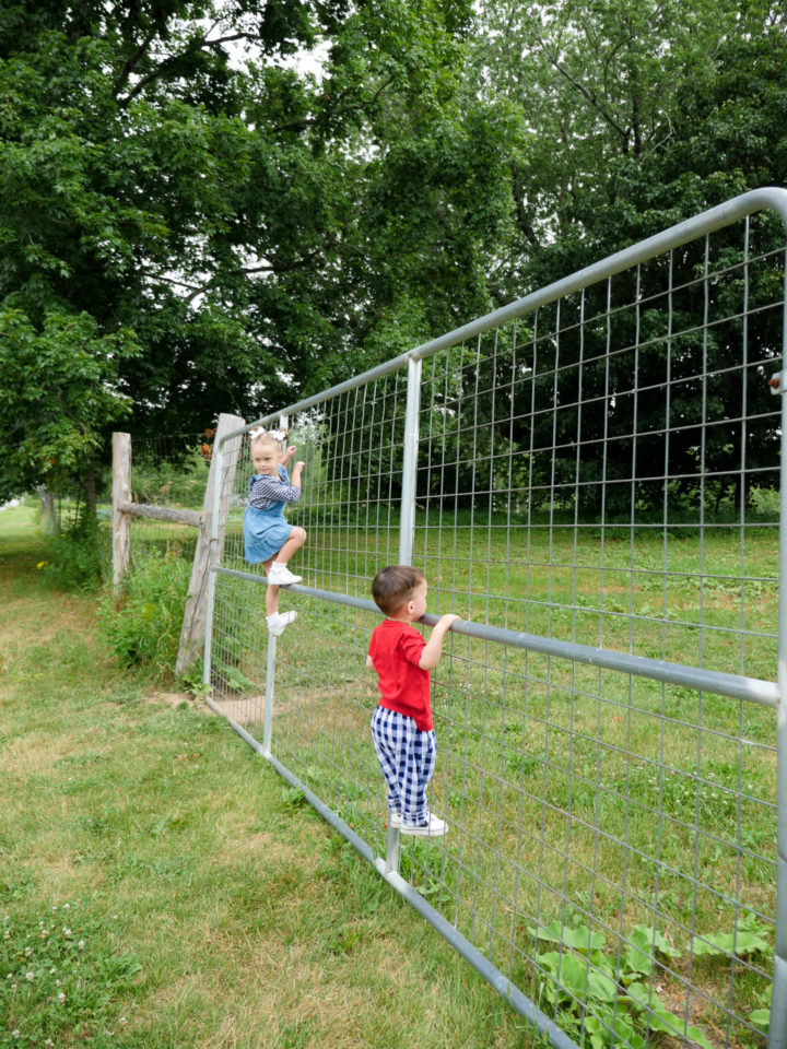 Eva Amurri Martino's kids Marlowe and Major climbing a fence in Bar Harbor, ME.