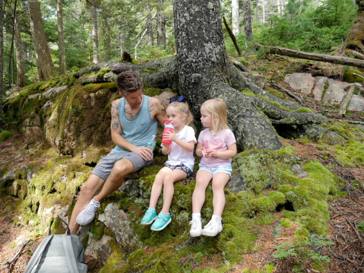 Eva Amurri Martino's husband Kyle, daughter Marlowe and friend sit under a tree in Bar Harbor, ME.