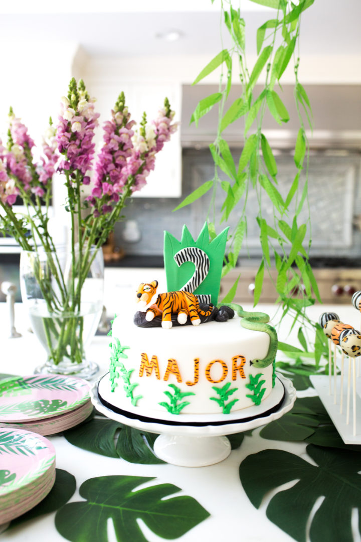 Eva Amurri Martino Shares Images From Her Son Majors Safari Themed 2nd Birthday Party