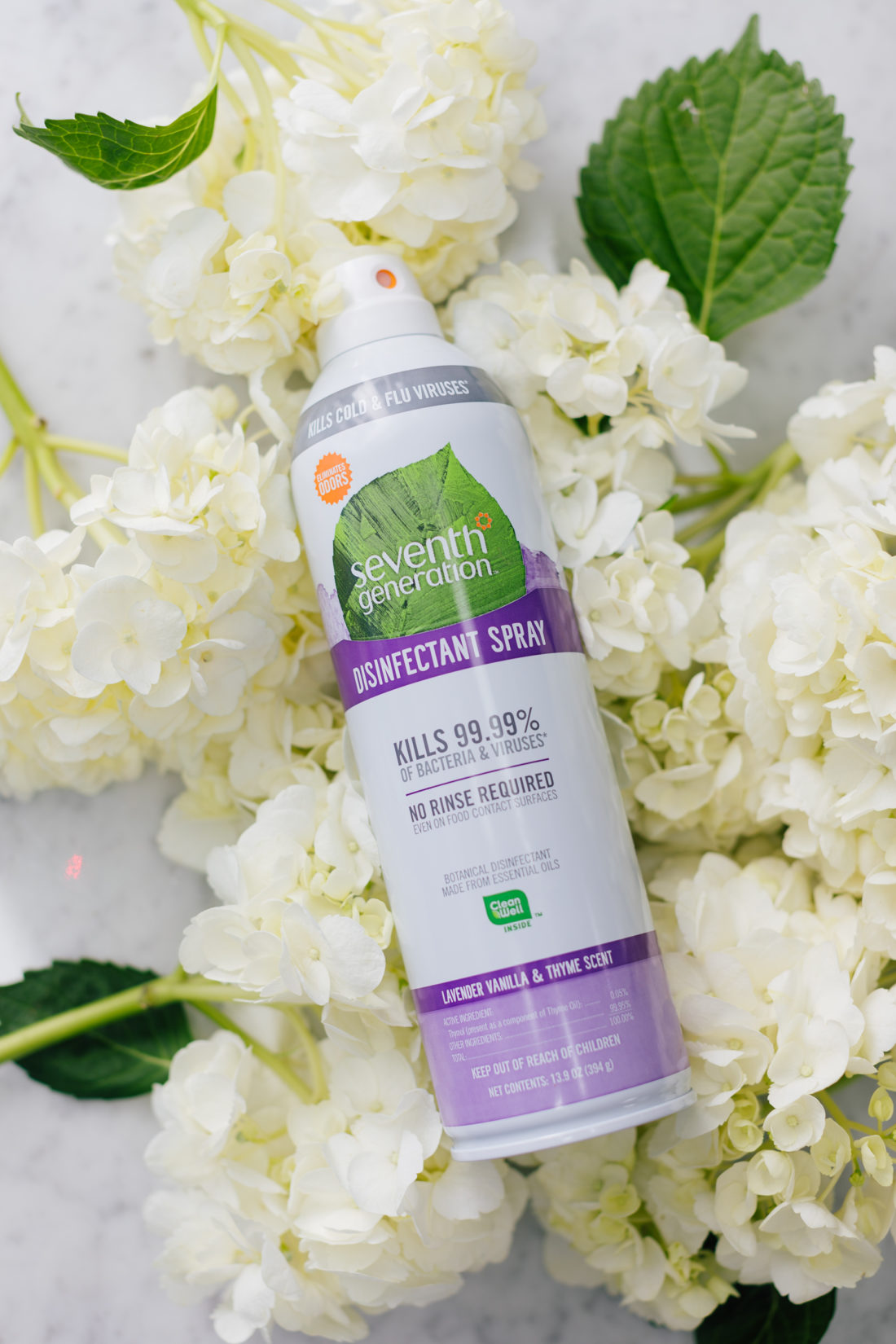 Eva Amurri Martino shares her September 2019 Obsessions which includes this Seventh Generation Disinfectant Spray