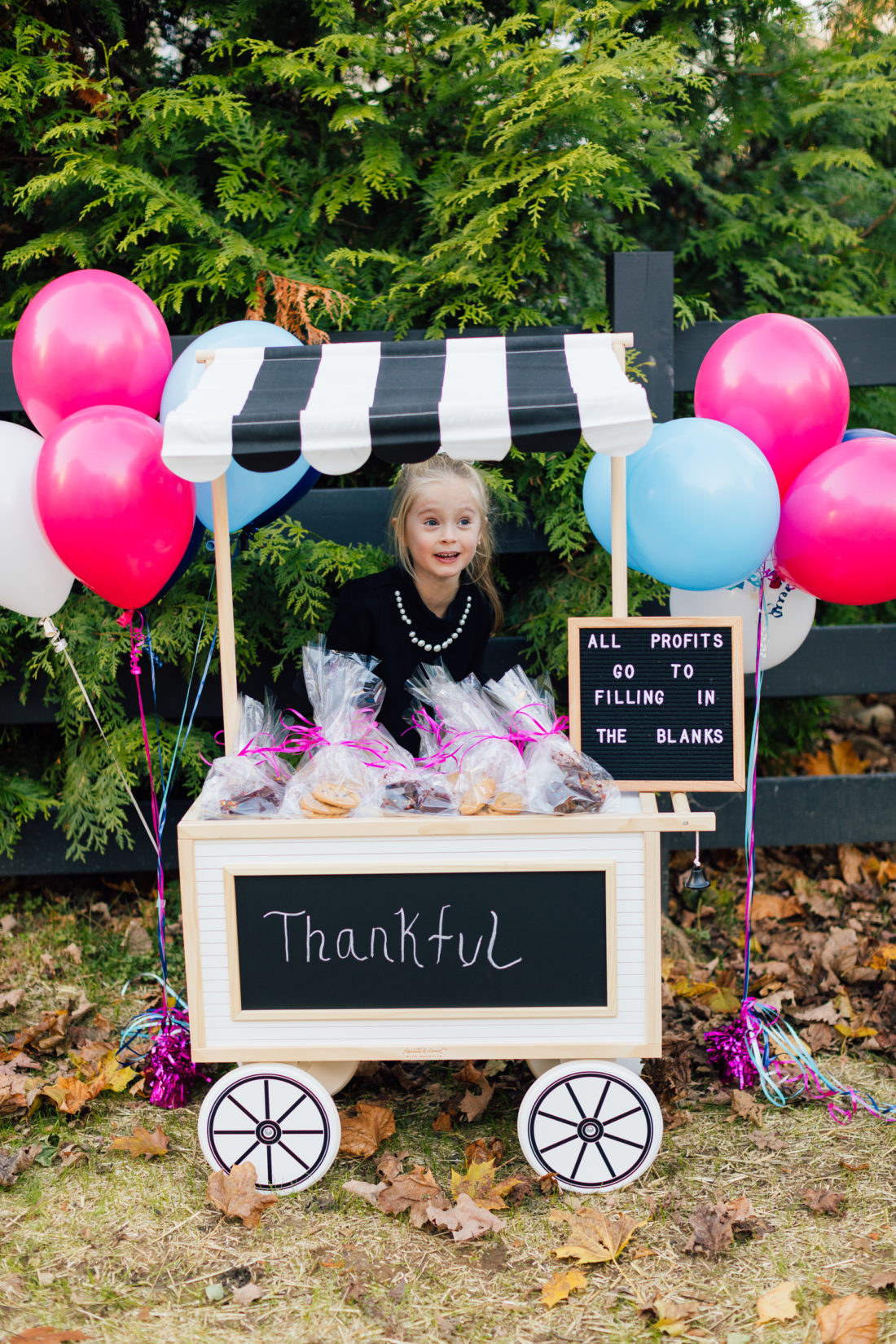 Marlowe Martino sells baked goods to raise money to benefit nonprofit organization Filling in the Blanks