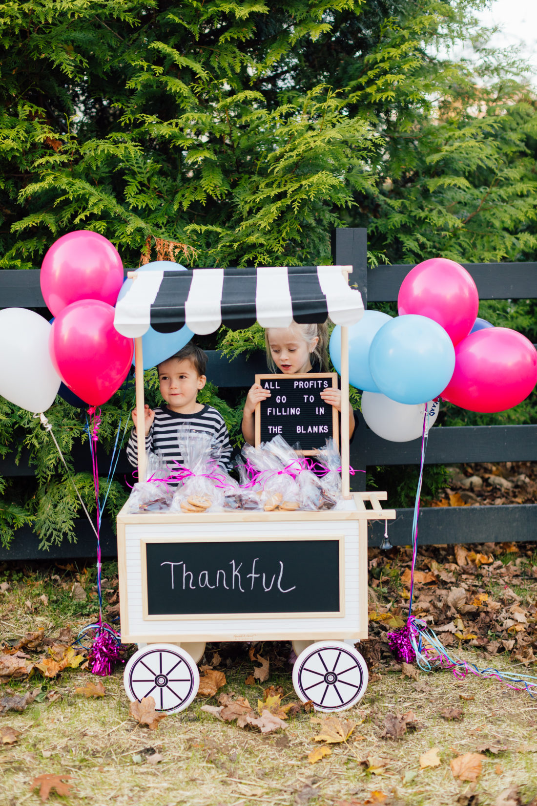 Marlowe and Major Martino sell baked goods to raise money to benefit nonprofit organization Filling in the Blanks
