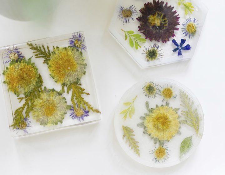 Eva Amurri shares how to make her DIY Pressed Flower Coasters