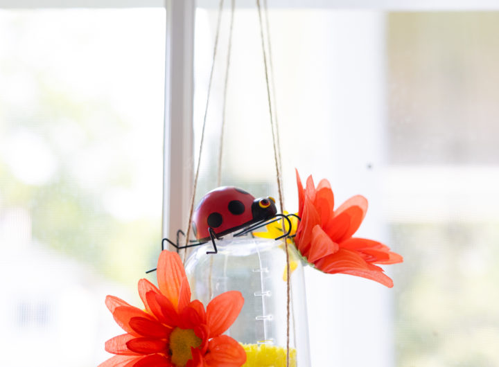 Eva Amurri shares her DIY Butterfly Feeders